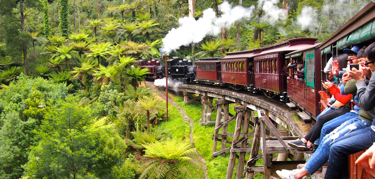 Puffing billy meetoo