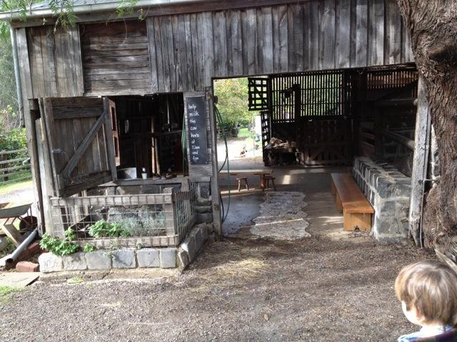 Collingwood_childrens_farm05