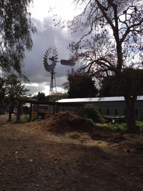 Collingwood_childrens_farm16
