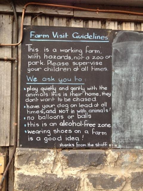 Collingwood_childrens_farm20
