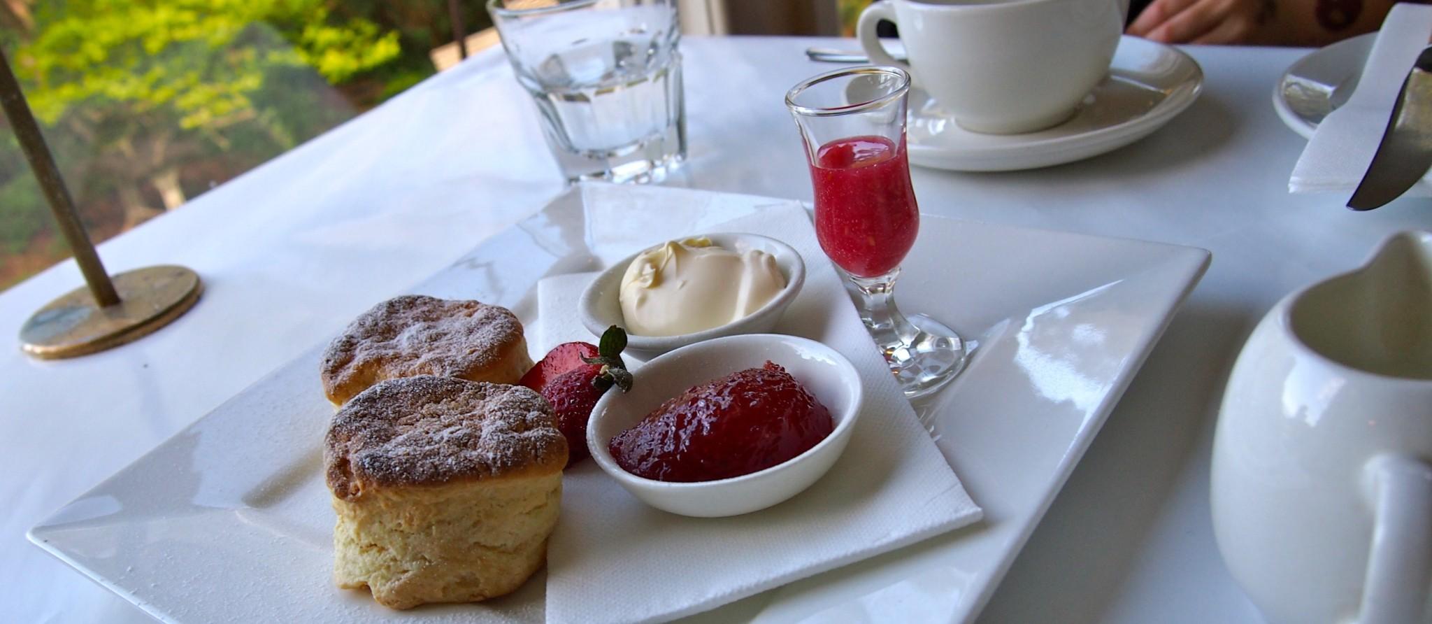 Coonara Springs - Devonshire Tea