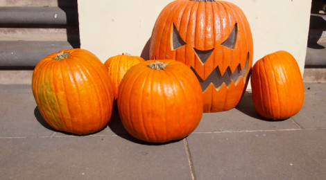 Spooktober Halloween Festival
